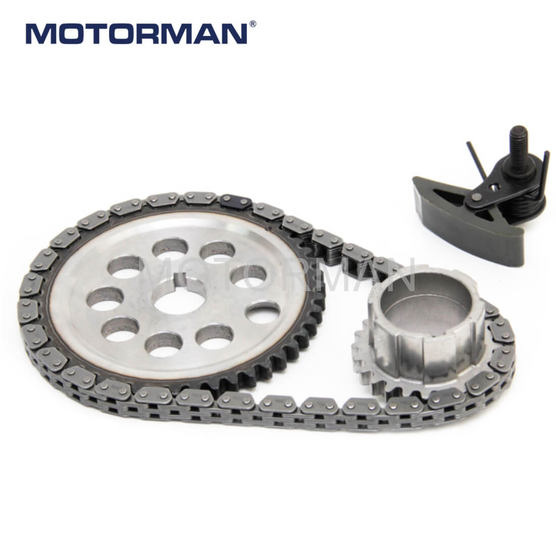 Engine Parts Timing Chain Kits 24504668