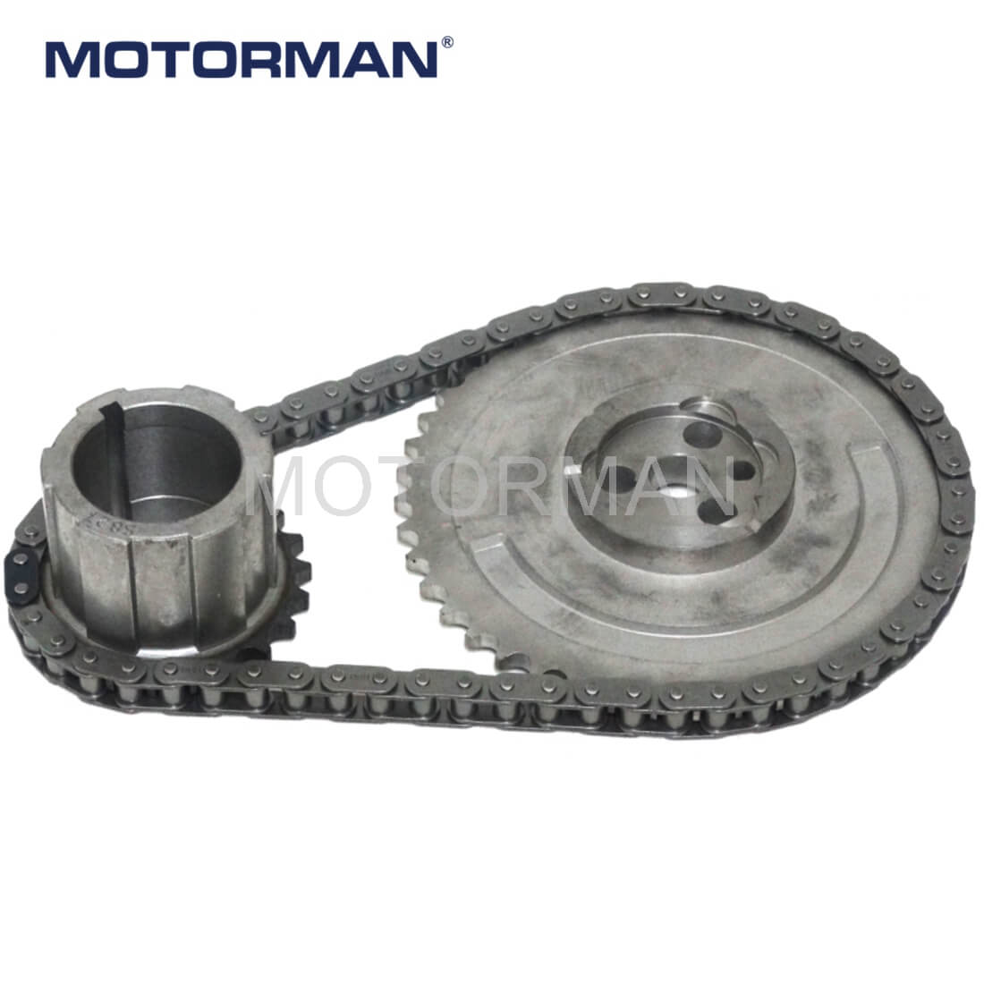 Engine Parts Timing Chain NMGM006